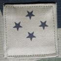 Grade Général corps d'armée 4 étoiles