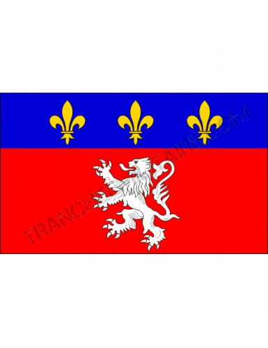 Drapeau Lyonnais (150*90)